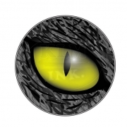 cats-eye